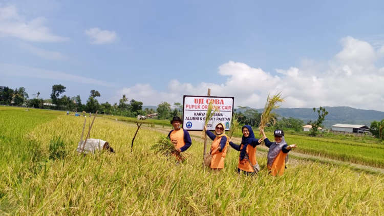 Alumni SMAN 1 Pacitan Ujicoba Pupuk Organik Produksi Yayasan SMAN 271 Tjoewik